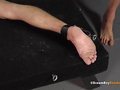 Whipping Feet -... BDSM (Gay);Gay Porn (Gay);Sex Toys (Gay);Spanking (Gay);Twinks (Gay)